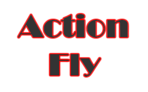 Action Fly