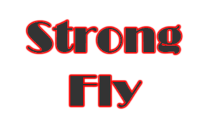 Strong Fly