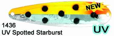 DW MAG M1436 UV Spotted Starburs