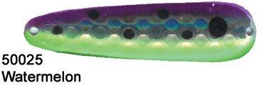 DC FBM50025 Fuzzy Bear Waterm